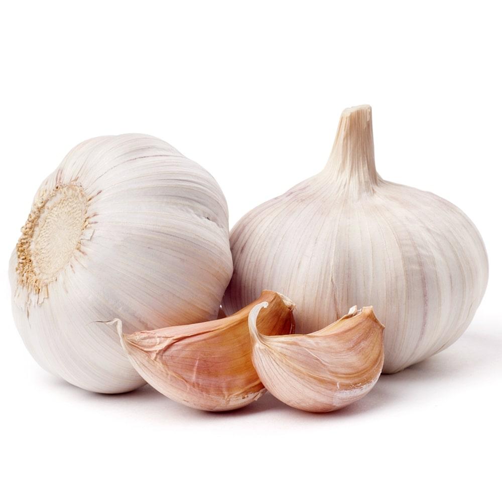 Garlic Powder (Odorless)